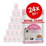 Смесена опаковка: 24 х 85 гр консервирана храна Royal Canin Kitten Instinctive - 24 x 85 гр (2 различни сорта)