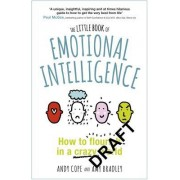 The Little Book of Emotional Intelligence: How to Flourish in a Crazy World