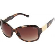 Lee Cooper Rectangular Sunglasses(Brown)