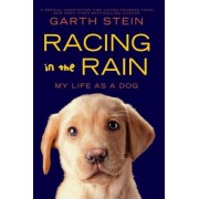 Racing in the Rain: My Life as a Dog, Hardcover