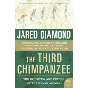 The Third Chimpanzee: The Evolution and Future of the Human Animal, Paperback/Jared M. Diamond