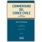 Commentario del Codice civile-Modulo famiglia II ed. (Vol. III), Di Rosa, Utet Giuridica, 2018, Codici, Diritto di famiglia
