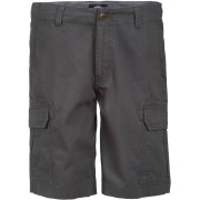 Dickies New York Shorts 30 Grå