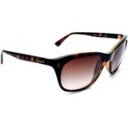Vogue Wayfarer Sunglasses(Brown)