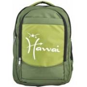 Hawai 15.4 inch Laptop Backpack(Green)