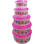 Plastic Food Storage Containers Set of 5 PCS (2500 ml 1800 ml 1000 ml 500 ml 250ml) Pink