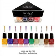 Synaa Nail Polish Set of 10 Pieces (Multicolor Set #2)