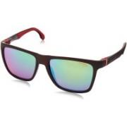 Carrera Wayfarer Sunglasses(Green)