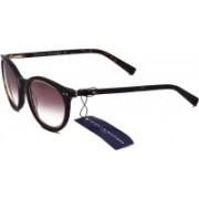 Tommy Hilfiger Wayfarer Sunglasses(Brown)