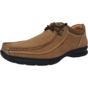 Hitmax P-34-BR Lace Up For Men(Brown)