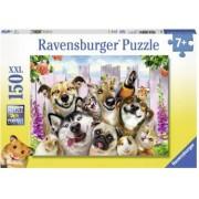 Puzzle Animale Prostute 150 Piese