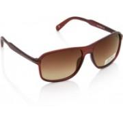 Joe Black Rectangular Sunglasses(Brown)