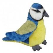 Merkloos Vogel knuffels blauwe pimpelmees 15 cm