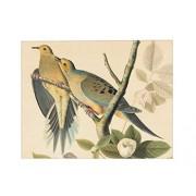 Audubon Birds Sound Wallet - Plays Authentic Bird Sounds