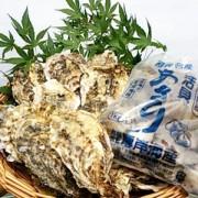 ≪厚岸産≫殻付かき20個&貝あさりセット ☆(冷蔵)