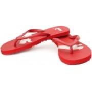 Puma Arizona Ind- Women Flip Flops