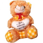 Soft toy Fir checks teddy 25 cm for kids SE-St-49