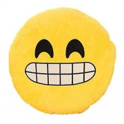 Close Up Smiley Plush Cushion with a Big Smile