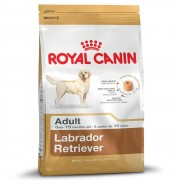 Royal Canin Breed 2 x 12 kg Labrador Retriever Adult Royal Canin - hundfoder