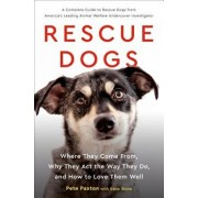 Rescue Dogs: Where They Come From, Why They Act the Way They Do, and How to Love Them Well, Hardcover/Gene Stone