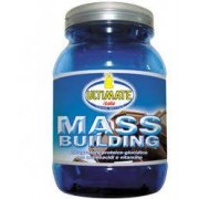 Ultimate Mass Building Gusto Cacao 1,8kg