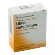 > Lilium Comppsitum 10 Fiale 2,2ml Heel