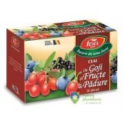 Ceai cu Goji si Fructe de Padure 20 plicuri