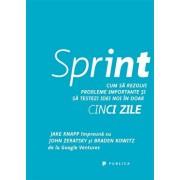 Sprint. Cum sa rezolvi probleme importante si sa testezi idei noi in doar cinci zile/Braden Kowitz, Jake Knapp, John Zeratsky