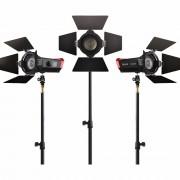Aputure LS-mini 20 flight KIT DDC komplet profesionalna LED video rasvjeta za snimanje