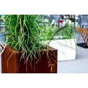 Intergard Jardiniere acier corten carré 50x50x50cm