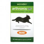 ROSENTRADE Arthronis mini fáze 2 CANIS sýrová příchuť 60tbl