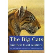 The Big Cats and Their Fossil Relatives: An Illustrated Guide to Their Evolution and Natural History, Paperback/Mauricio Anton