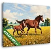 Barna ló csikóval (35x25 cm, Vászonkép )