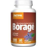 Jarrow Formulas Borage GLA-240 60 softgels