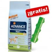 Affinity Advance 12 a 15 kg + juguete KONG Squeezz Stick ¡gratis! - Medium Adult pollo arroz (14 kg)