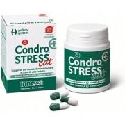 Innovet Italia Srl Condrostress + Cat 30 Capsule Monodose