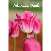 Address Book.: (Flower Edition Vol. E91) Pink Tulip Cover Design. Glossy Cover, Large Print, Font, 6 X 9 for Contacts, Addresses, Pho