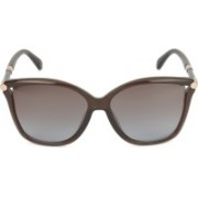 Jimmy Choo Butterfly Sunglasses(Brown)