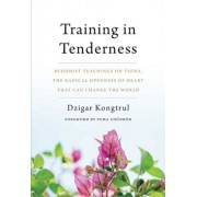 Training in Tenderness: Buddhist Teachings on Tsewa, the Radical Openness of Heart That Can Change the World, Paperback/Dzigar Kongtrul