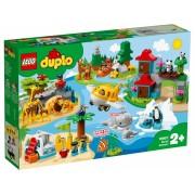 LEGO DUPLO ANIMALELE LUMII 10907