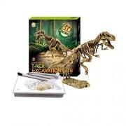 Liberty Imports Dinosaur Skeleton 3D Dino Fossil Bones Excavation Science Kit - Tyrannosaurus Rex