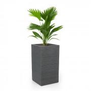 Luxflor Vaso de plantas 35 x 65 x 35 cm Fibra de vidro interna/externa cinza escuro