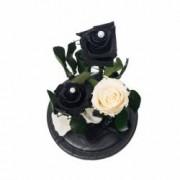 3 Trandafiri Criogenati Mov Alb in cupola de sticla Queen Flowers