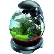 Tetra Cascada Globe akvárium 6,8L