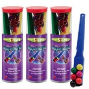 Dowling Magnets DOWLING MAGNETS SIMPLY SCIENCE MAGNET MANIA KIT