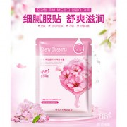 HanChan Skin Care Plant Facial Mask Moisturizing Oil Control Whitening Face Masks Multi Extract Makeup Products