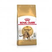 2x10kg Royal Canin Bengal ração