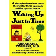 Waking Up Just in Time: A Therapist Shows How to Use the Twelve Steps Approach to Life's Ups and Downs, Paperback/Abraham J. Twerski