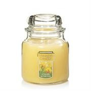 Yankee Candle Flowers In Sun Small Jar Retail Box