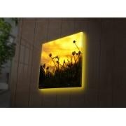 Tablou pe panza iluminat Ledda, 254LED4259, 40 x 40 cm, panza